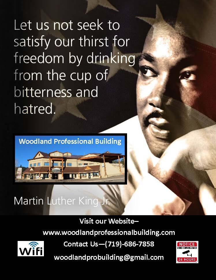www.woodlandprofessionalbuilding.com