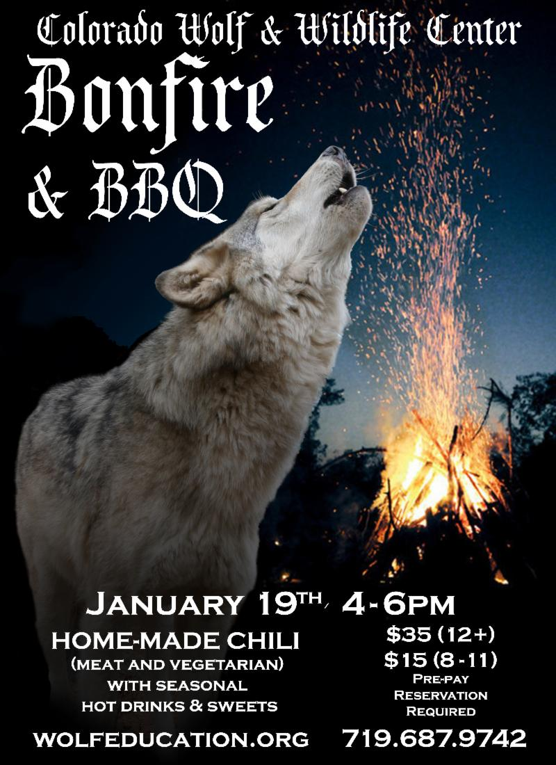 Wolf Bonfire and BBQ