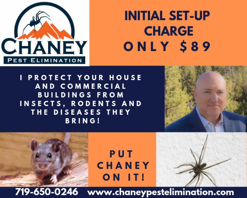 Chaney Pest