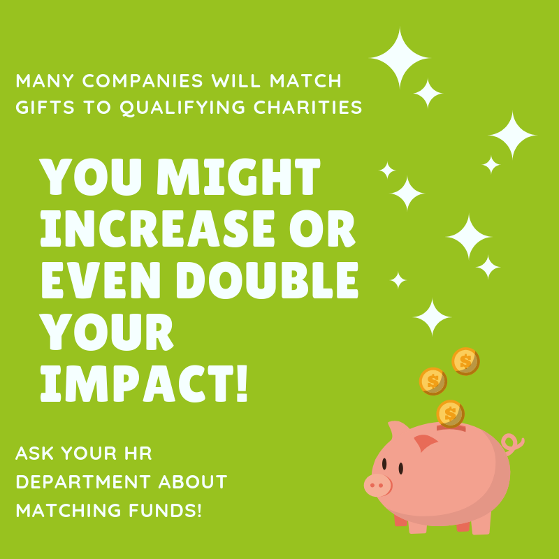 "An image with a piggy bank and coins falling into it. The text says ""Many companies will match gifts to qualifying charities. You might increase or even double your impact! Ask your HR Department about matching funds."