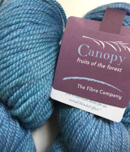 The Fibre Company Canopy Worsted Yarn