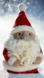 Santa Claus Gnome Kit
