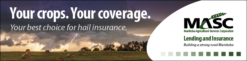 Manitoba Agriculture Services Corporation ad about hail insurance for producers