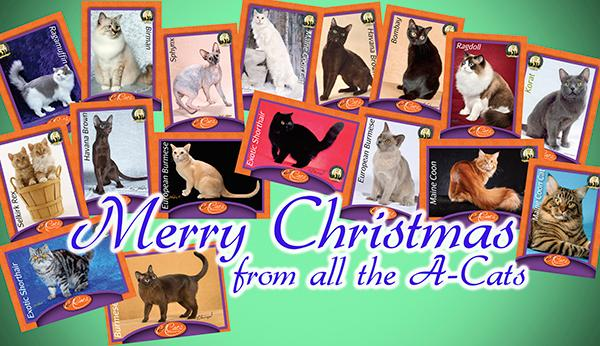 The Cat Fanciers' Association Newsletter - December