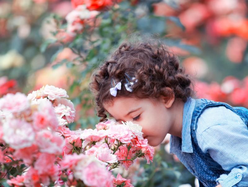toddler_smelling_roses.jpg