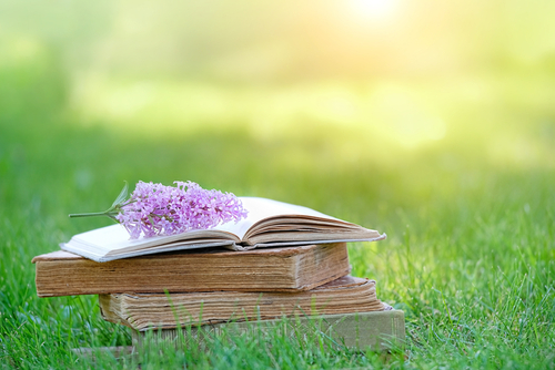 old books and lilac flowers on nature meadow background. relax_ Reading and knowledge concept. copy space.