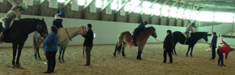Lorna Young leading a yoga on horseback stretch
