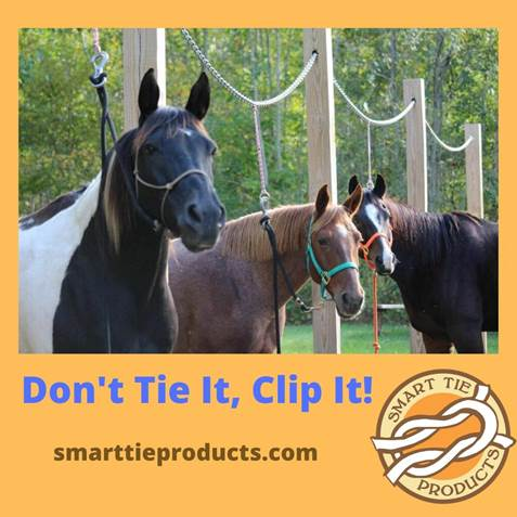 Don_t Tie It_ Clip It ad for Smart Tie Products