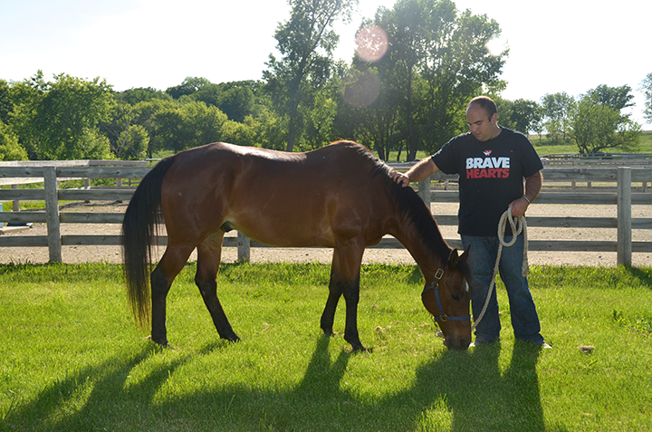 Hank the horse eating grass with man standing beside him