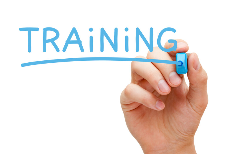 image showing someone writing the word Training in blue