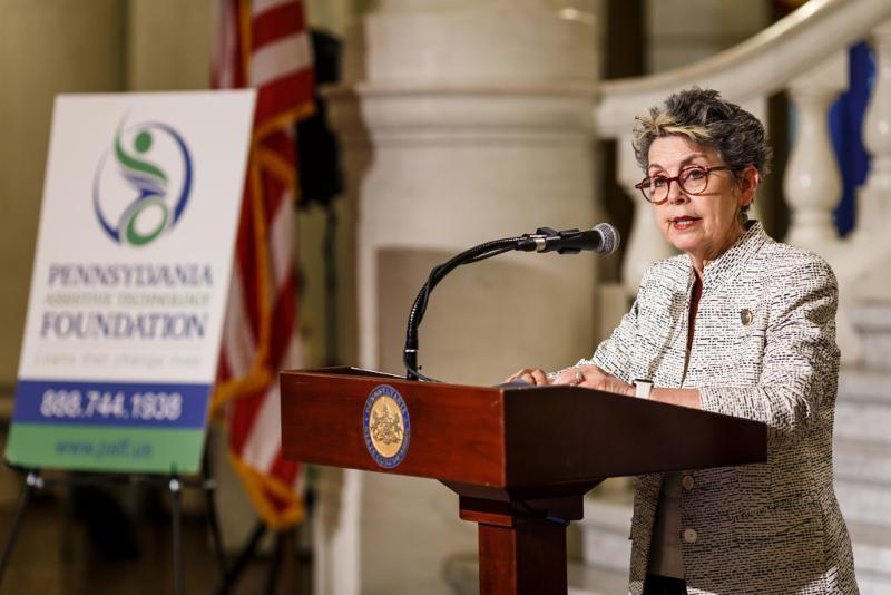 Representative Mary Jo Daley speaks at PATF_s 2018 press conference.