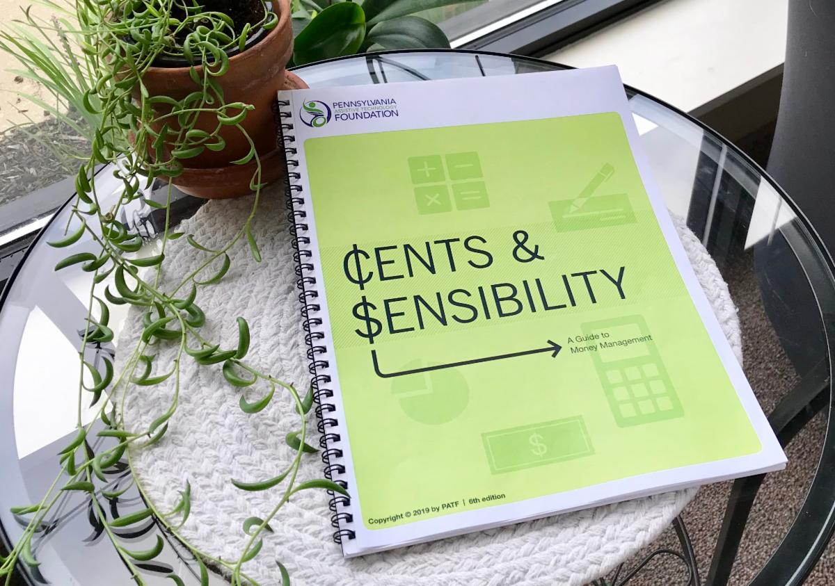 Cents and Sensibility book with updated light green cover is positioned on a small glass table next to a plant.