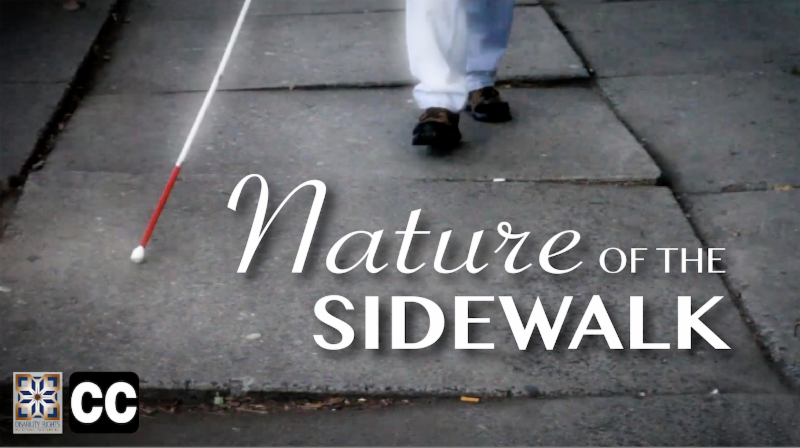 Nature of the Sidewalk Screenshot
