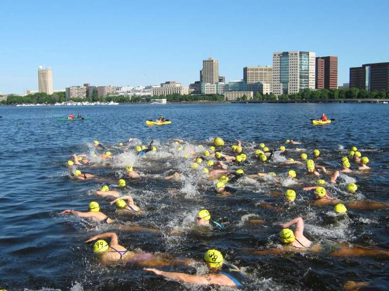 Charles River Swim
