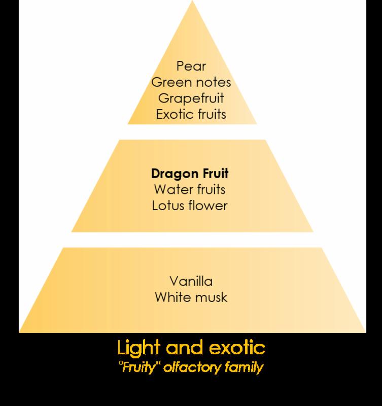 lampe berger fuel