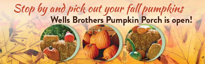 The Wells Brothers Pumpkin Porch is open.