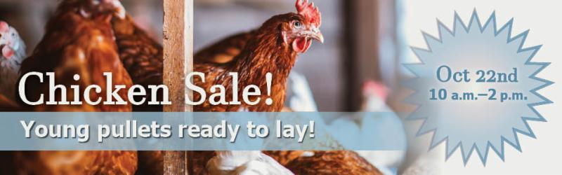 Wells Bros Chicken Sale Oct 22.