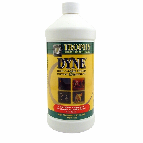 DYNE High Calorie Supplement at Wells Brothers Pet Lawn & Garden.
