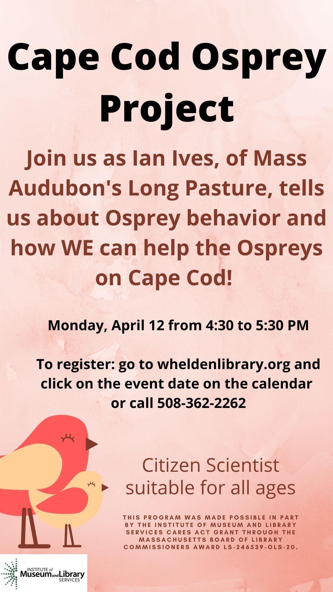 Cape Cod Osprey Project.jpg