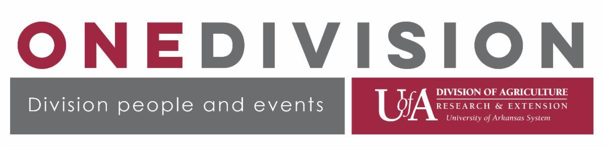 One Division Newsletter header