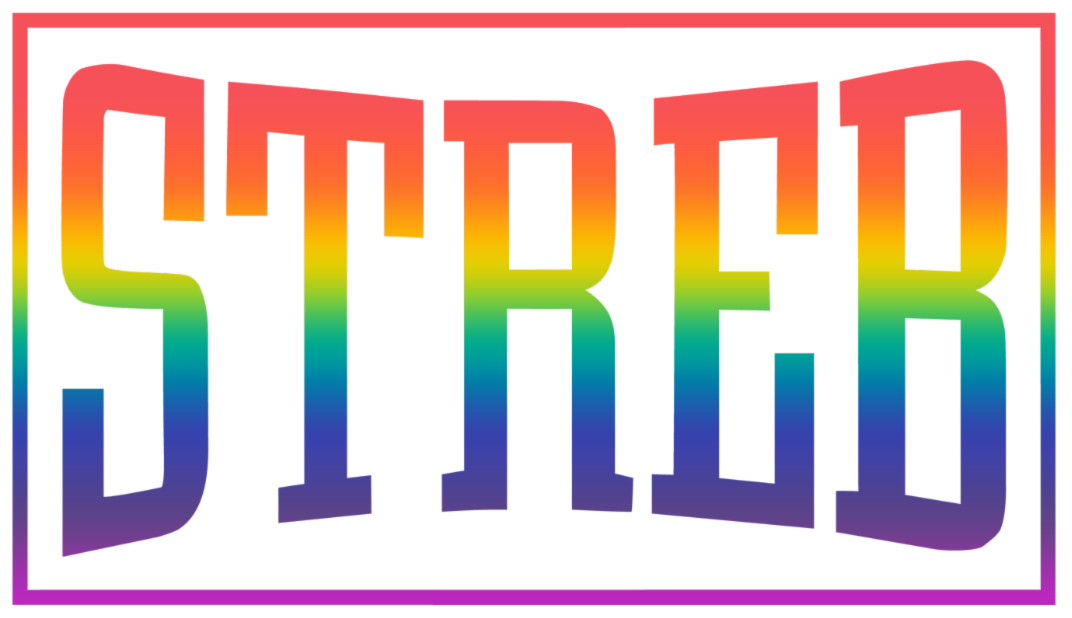 STREB logo in rainbow gradient with Action Maverick Award in black along bottom.