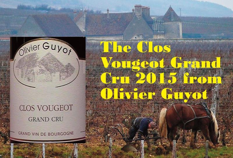 Guyot Vougeot 2015 Header