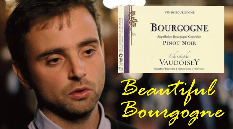 Vaudoisey Bourgogne 2016 Header