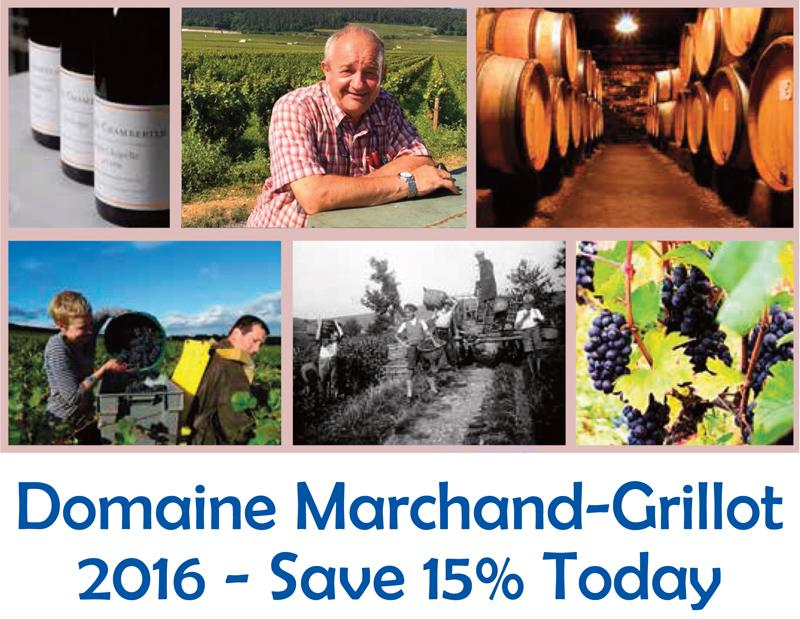 Marchand-Grillot 2016 15% Header