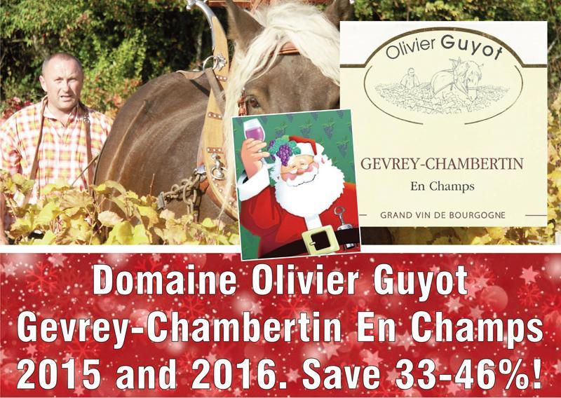 Guyot 2015 2016 Champs header
