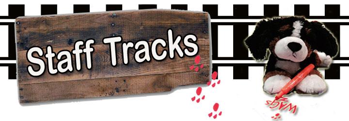 Staff Track icon