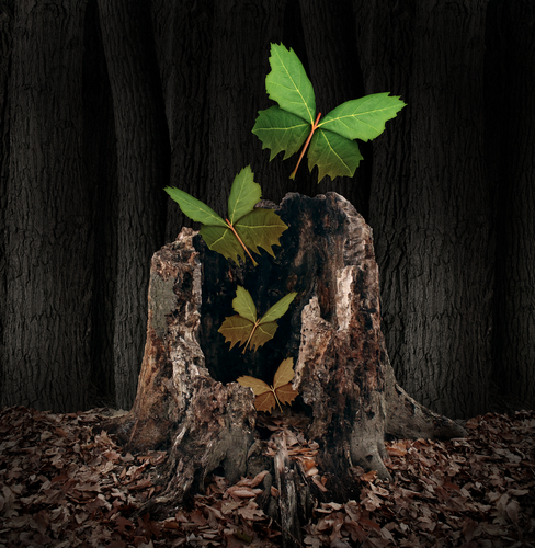 Afterlife and rebirth concept as a group of leaves shaped as flying butterflies rising out of a dead tree stump as a symbol of a soul leaving the body and a birth of new life after death with hope.