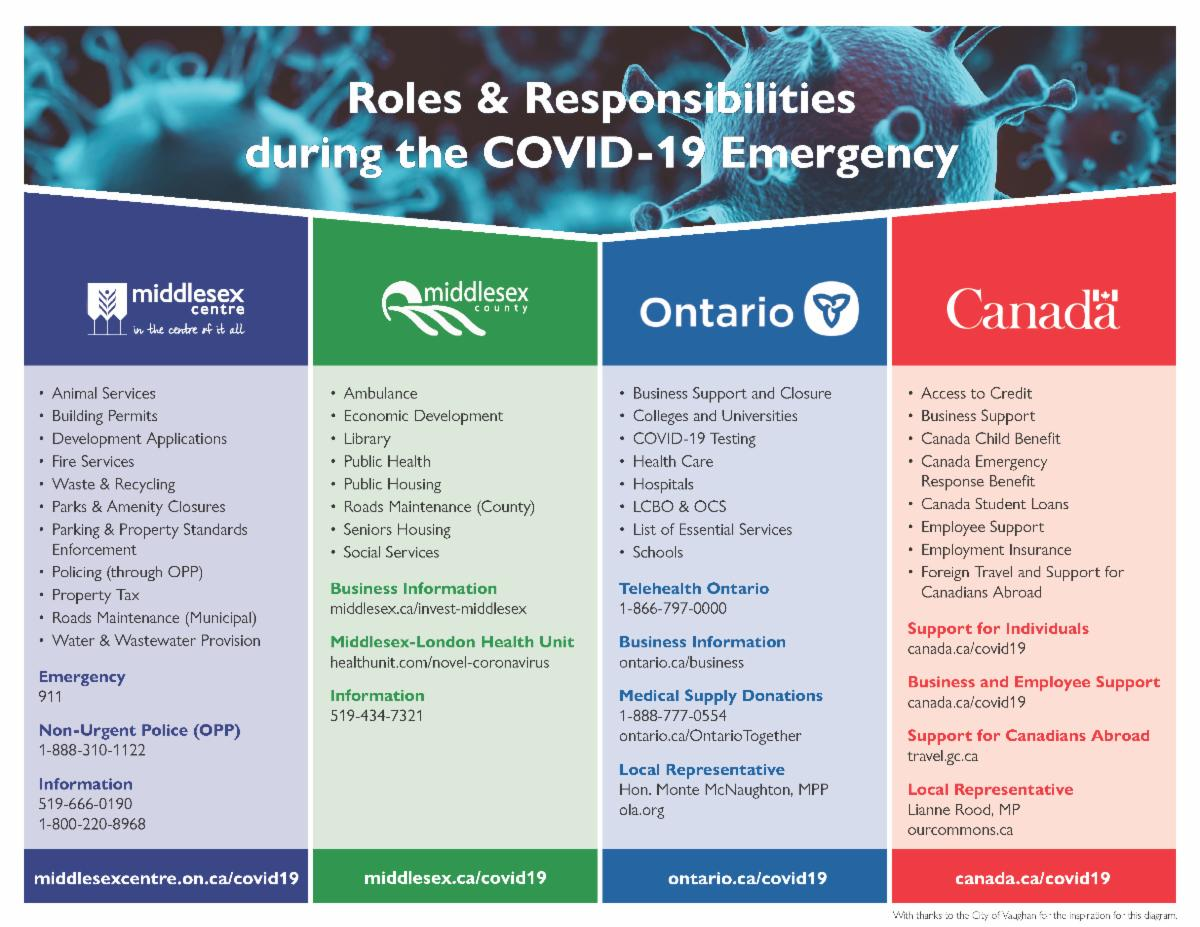 COVID-19 Responsibilities by Level of Government
