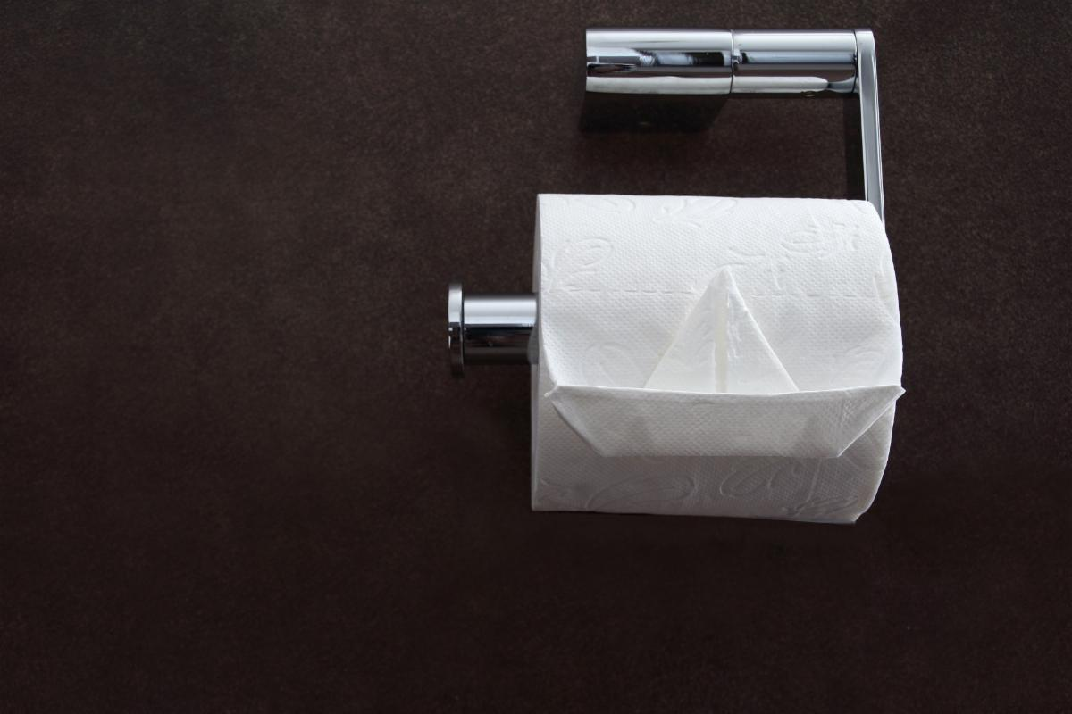 Toilet Tissue - Image by Anke Dannerbeck from Pixabay