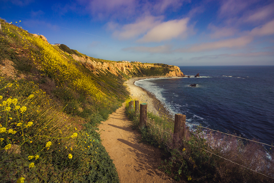 Photo of beach path