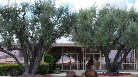 Photo of a Palm Springs Church