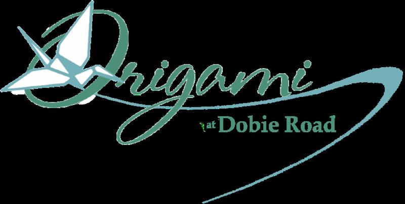 The Latest News From Origami Brain Injury Rehabilitation Center