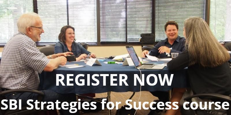 SBI Strategies for Success course