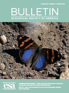 Bulletin, Feb 2019