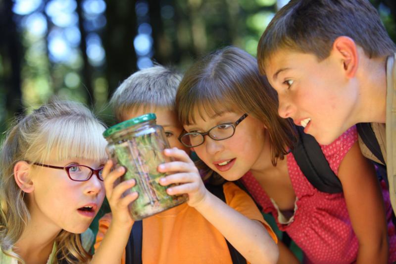kids_bug_in_jar.jpg