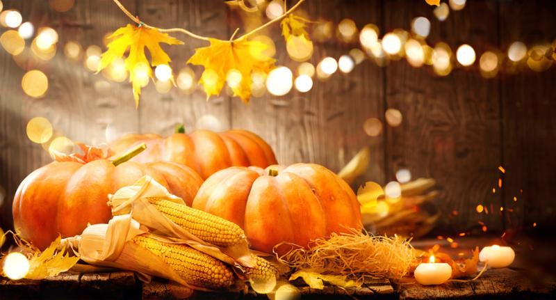 Pumpkin_ Squash. Happy Thanksgiving Day Background. Autumn Thanksgiving Pumpkins over wooden background_ still-life. Beautiful Holiday Autumn festival concept scene Fall_ Harvest.