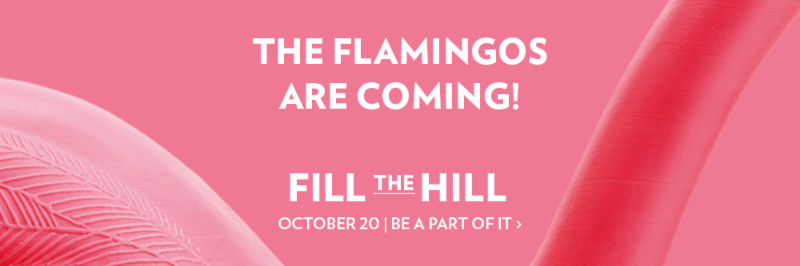 Fill the Hill campaign banner