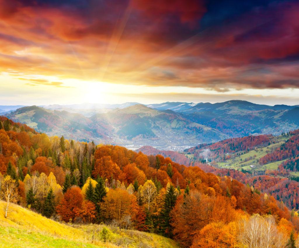 fall-landscape-1024x849.jpeg