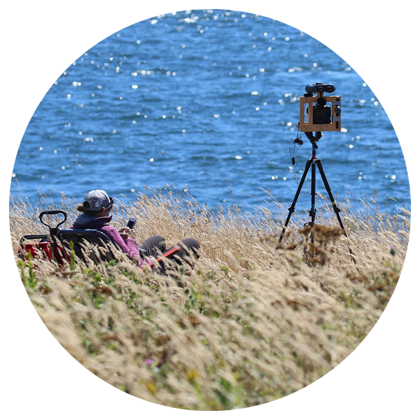 A coastal researcher sitting atop grassy dunes with her equipment