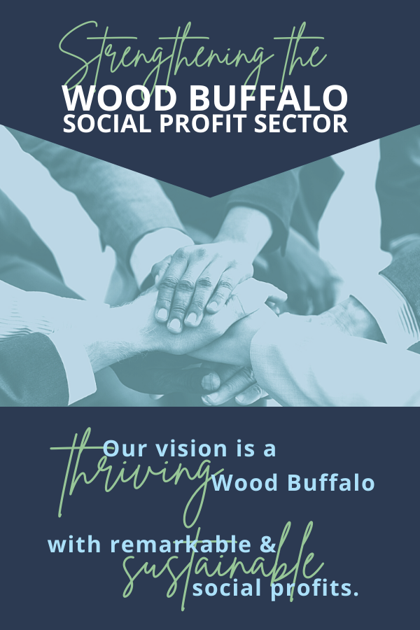 Strengthening the WB Social Profit Sector