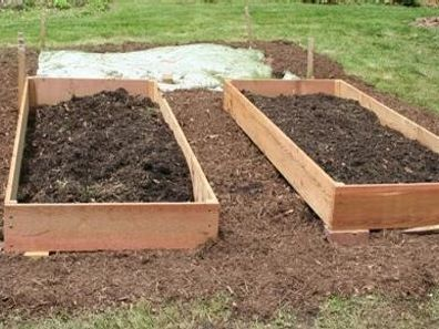 Lawn replacement with raised beds