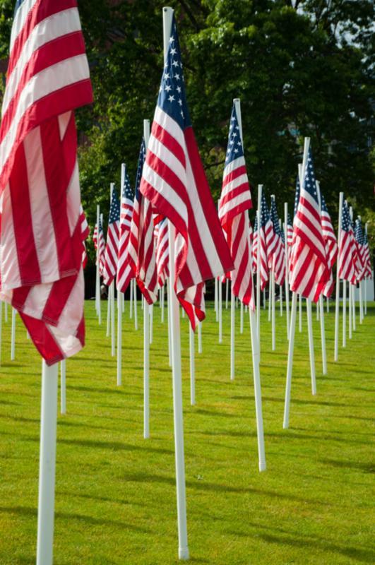 american_flags_grass.jpg