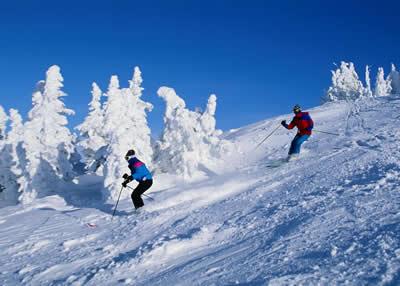 icy-landscape-skiers.jpg