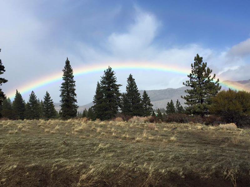 Beautiful rainbow over Verdi NV this morning
