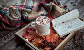 Fall leaves outdoors blanket cozy