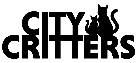 Logo 540 with transparency